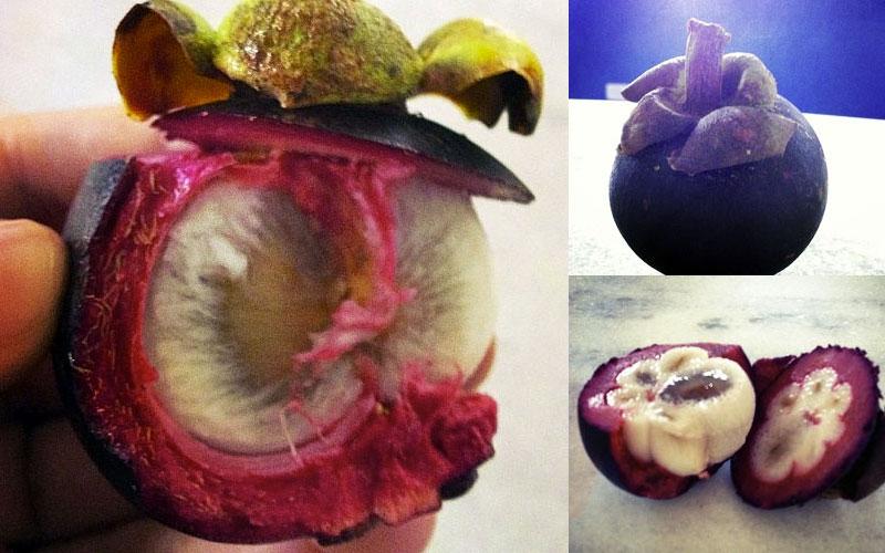 Este é o mangostin, também chamado de mangostão, uma fruta de origem asiática com preço salgado