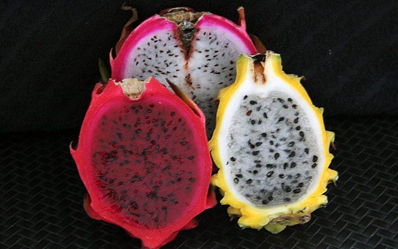 Como comer Pitaya, a fruta dragão