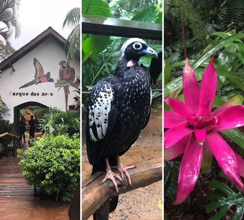 Parque das Aves (foto: Alan Correa)